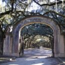 Wormsloe State Historic Site, Savannah, Georgia