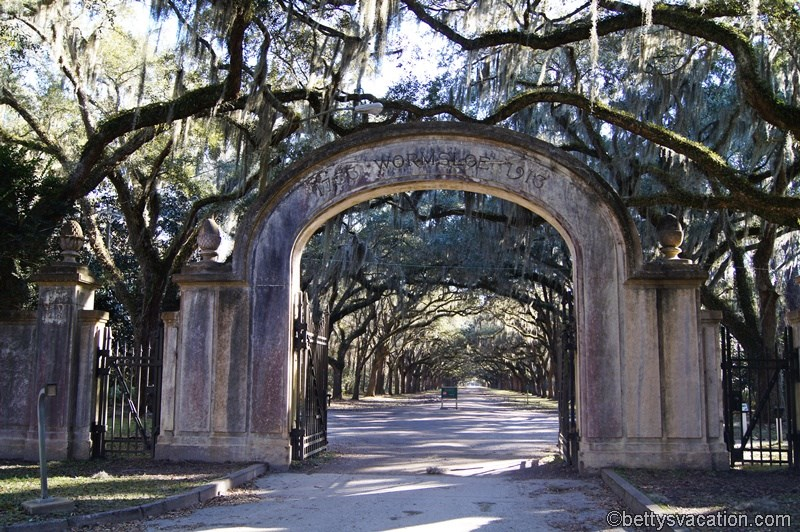32 - Wormsloe Historic Site