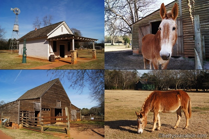 58 - Jimmy Carter National Historic Site
