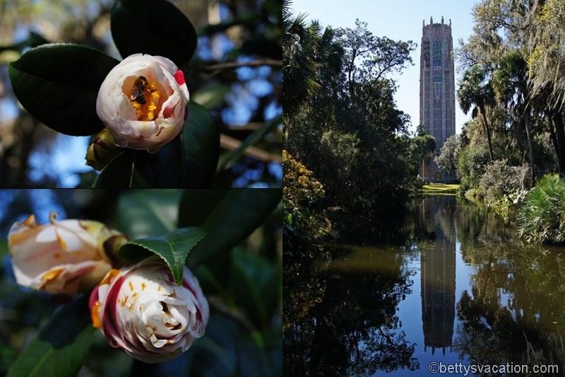 6 - Bok Tower Gardens