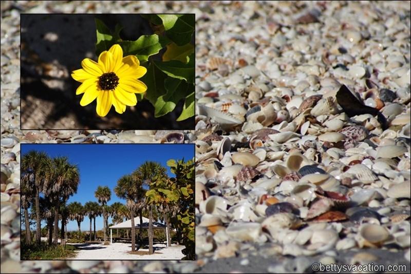 7 - Gasparilla Island State Park