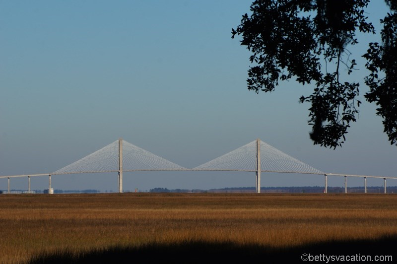 7 - Sidney Lanier Bridge