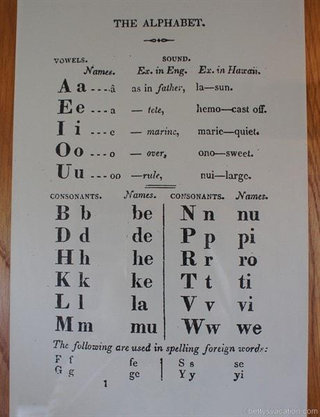 wörter mit allen vokalen