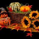 Halloween – von Irland in die Welt