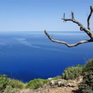 Mallorcas Traumstraße – unterwegs auf der MA-10, Teil 1