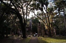 Bulow Plantation Ruins Historic State Park, Florida