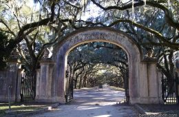 Wormsloe Historic Site, Savannah, Georgia