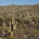 Die Nationalparks Arizonas, Teil 3
